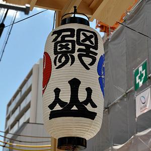 Koiyama1