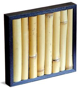 bambooCD01.jpg